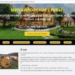 Создание сайтов и продвижение в  Кемерово, Кемерово
